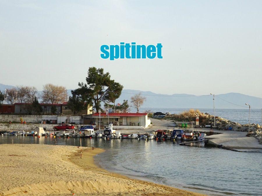 Photo 104103857