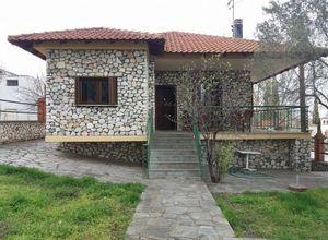 Μονοκατοικία προς πώληση Πολύκαστρο Μικρό Δάσος 90 τ.μ. Ισόγειο