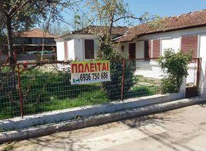 Μονοκατοικία προς πώληση Άγιος Πέτρος (Ευρωπός) 90 τ.μ. 3 Υπνοδωμάτια