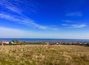 Land Plot for sale Leptokarya (Easts Olimpos) 11,000 m<sup>2</sup> Basement
