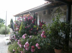 Μονοκατοικία για ενοικίαση Καλαμάτα Περιβολάκια 103 τ.μ. Ισόγειο
