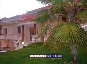 Μονοκατοικία προς πώληση Κάτω Κεφαλάρι (Δοξάτο) 245 τ.μ. Ισόγειο 5 Υπνοδωμάτια 3η φωτογραφία