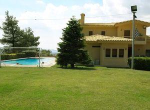 Sale, Villa, Penteli (Athens - North)