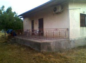 Detached House, Savalia