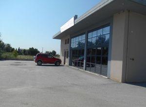 Sale, Business building, Trikala (Trikala Prefecture )