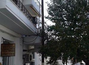 Διαμέρισμα προς πώληση Σκύρος Χώρα 55 τ.μ. 1ος Όροφος