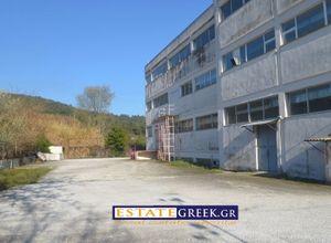 Κτίριο επαγγελματικών χώρων για ενοικίαση Καβάλα Περιγιάλι 5.920 τ.μ. Ισόγειο