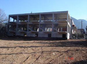 Συγκρότημα προς πώληση Παρνασσός Πολύδροσος 900 τ.μ. Ισόγειο