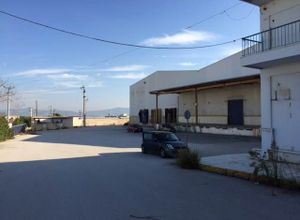 Sale, Industrial space, Mandra (Rest of Attica)