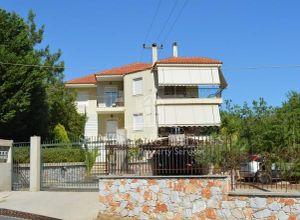 Διαμέρισμα προς πώληση Μόρια (Λέσβος - Μυτιλήνη) 117 τ.μ. Ισόγειο