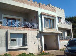 Μονοκατοικία προς πώληση Ευπάλιο Τρίκορφο 330 τ.μ. Ισόγειο