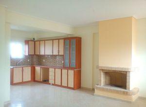 Άλλο είδος κατοικίας προς πώληση Άνω Λιόσια Άγιος Γεώργιος 440 τ.μ. 1ος Όροφος