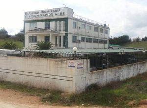 Κτίριο επαγγελματικών χώρων προς πώληση Οινόφυτα 1.350 τ.μ.