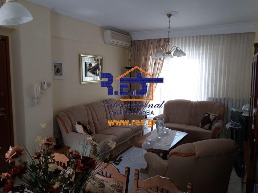 Photo 120100535