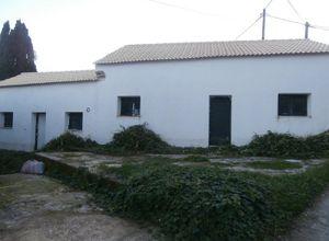 Detached House, Korissioi