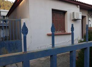 Μονοκατοικία προς πώληση Σαμακώβ (Ξάνθη) 80 τ.μ. Ισόγειο 2 Υπνοδωμάτια 2η φωτογραφία