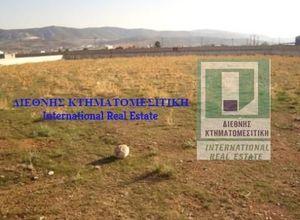 Arsa Satılık Center (Aspropirgos) 4.001 Metrekare(m²) Bodrum katı