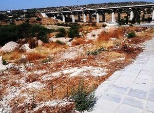 Land Plot, Erimi