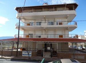 Apartment for sale Nei Pori (Easts Olimpos) 53 ㎡ 1 Bedroom