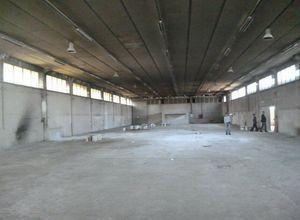 Βιομηχανικός χώρος, Ζώνη Χονδρεμπορίου