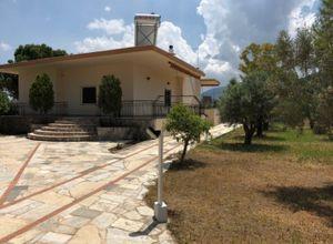 Detached House to rent Chalkida 150 ㎡ 4 Bedrooms