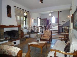 Detached House, Sozopoli