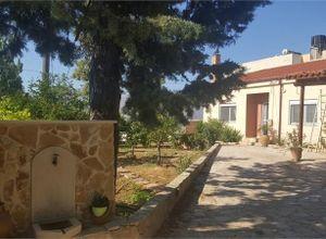 Μονοκατοικία προς πώληση Λιγόρτυνος (Αστερούσια) 115 τ.μ. 2 Υπνοδωμάτια
