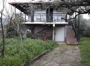 Rent, Detached House, Marmara (Aigeira)