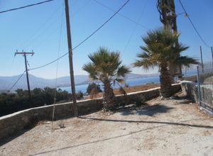 Sale, Apartment complex, Paros (Cyclades)