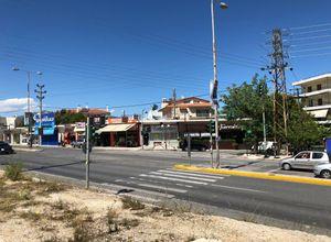 Sale, Store, Centre (Glika Nera)