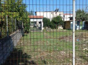 Arsa Satılık Elaionas (Diakopto) 490 Metrekare(m²)