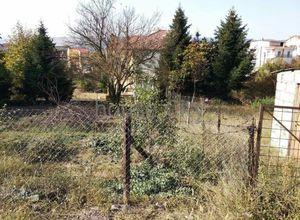 Sale, Land Plot, Penteli (Ioannina)