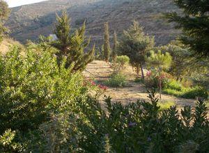 Sale, Land Plot, Kea (Cyclades)