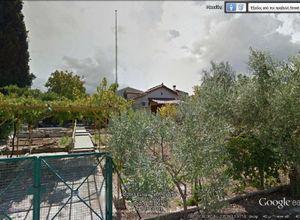 Μονοκατοικία προς πώληση Τανάγρα 110 τ.μ. Ισόγειο