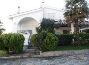Detached House, Plaka