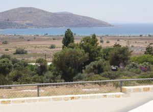 Detached House for sale Anavissos 195 m<sup>2</sup> Basement