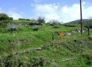 Sale, Land Plot, Idrousa (Andros)