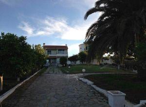Μονοκατοικία προς πώληση Νέος Ερινεός (Ερίνεο) 209 τ.μ. 4 Υπνοδωμάτια
