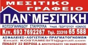 PAN`MESITIKH estate agent