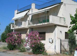 Apartment, Eretria