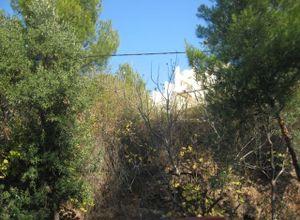 Land Plot, Kifisia