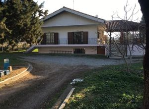 Sale, Detached House, Pylea (Thessaloniki - Suburbs)