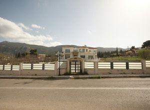 Μονοκατοικία προς πώληση Κ. Μαλακάσας 450 τ.μ. 4 Υπνοδωμάτια