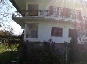Detached House, Georgianoi