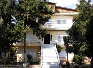 Detached House, Pylea