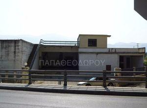 Κτίριο επαγγελματικών χώρων για ενοικίαση Πάτρα 2.100 τ.μ. Ισόγειο