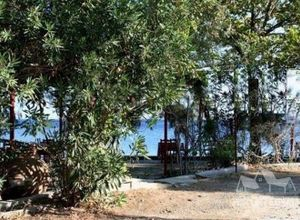 Ξενοδοχείο προς πώληση Λέσβος - Μυτιλήνη 1.800 τ.μ. Ισόγειο