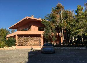 Apartment, Lagonisi