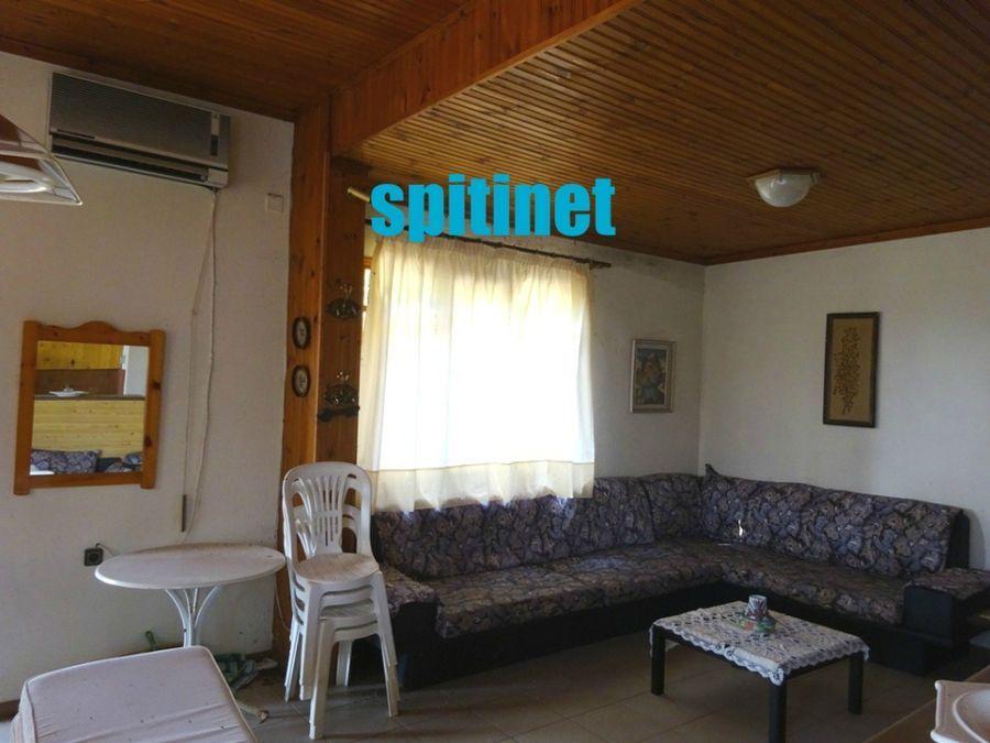 Photo 94677578