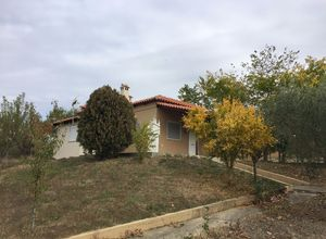 Detached House for sale Komotini 70 m<sup>2</sup> Ground floor
